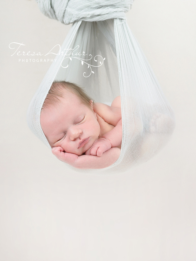 nova newborn photographer