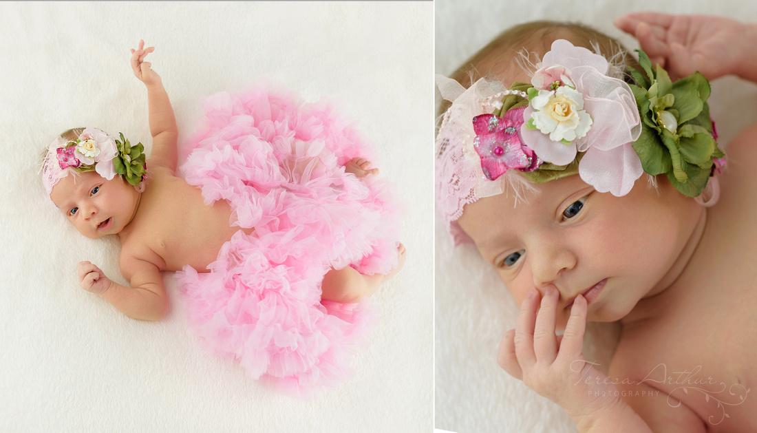 nova newborn photographer teresa arthur photography