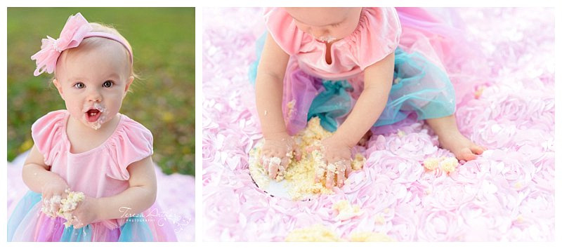 nova baby photographer cake smash