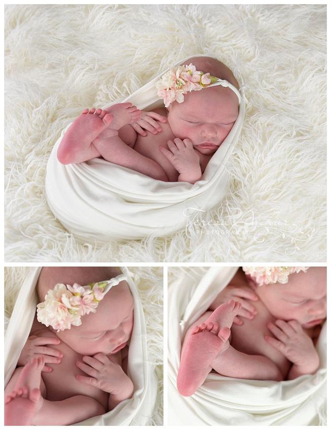 leesburg va newborn photographer