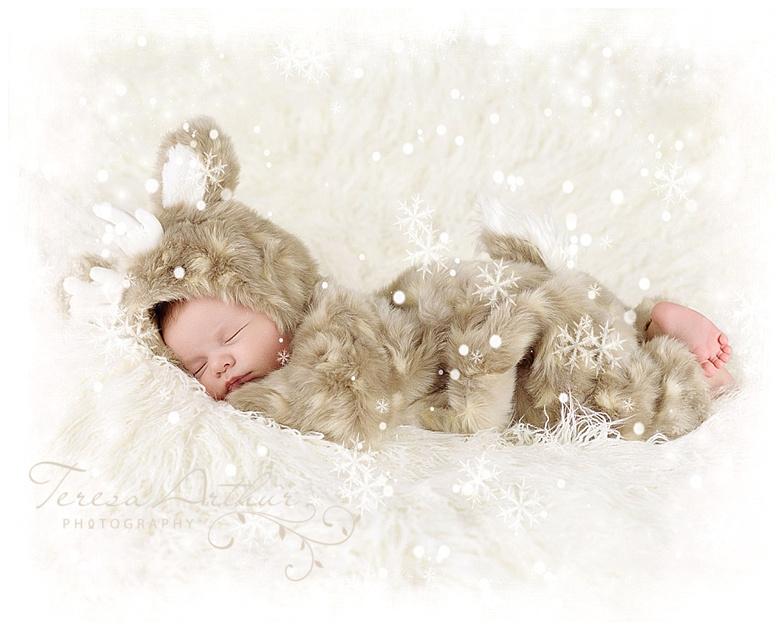 christmas baby photos by teresa arthur photography