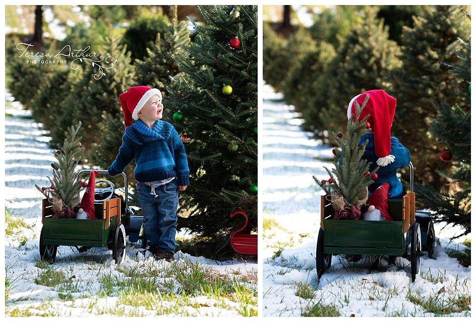 CHRISTMAS TREE FARM FAMILY PORTRAITS IN NORTHERN VIRGINIA BY TERESA ARTHUR PHOTOGRAPHY