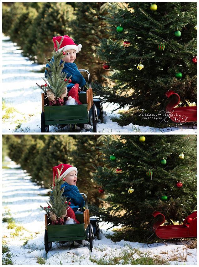 CHILDREN'S CHRISTMAS PHOTOS BY TERESA ARTHUR PHOTOGRAPHY