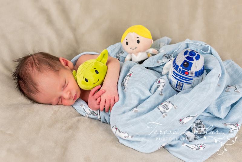 Baby Portraits by Teresa ARthur Photography-Fauquier County VA