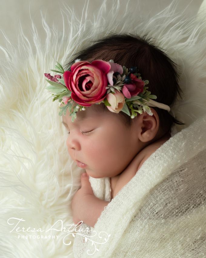 studio newborn portraits by teresa arthur photography