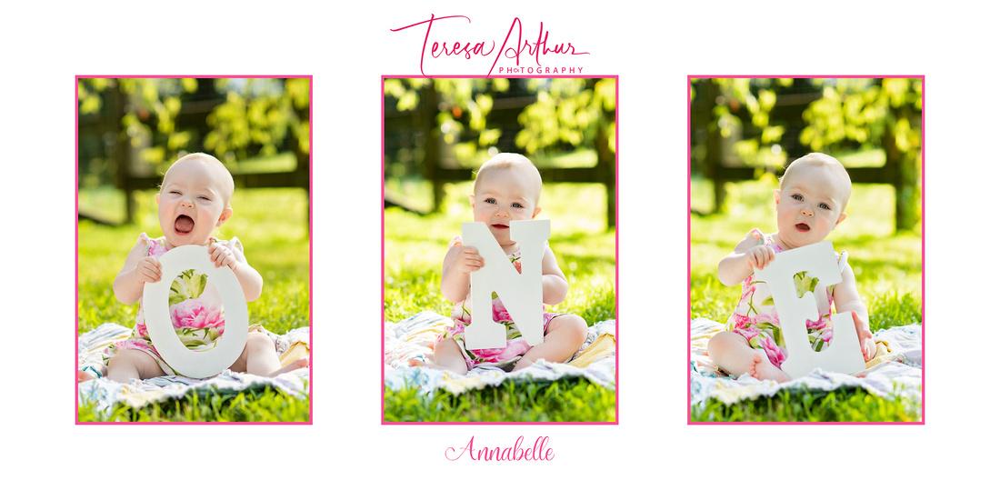 one year baby photos by teresa arthur in warrenton va