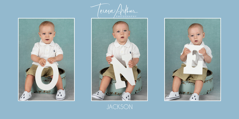 one year baby portraits by teresa arthur photography in warrenton va