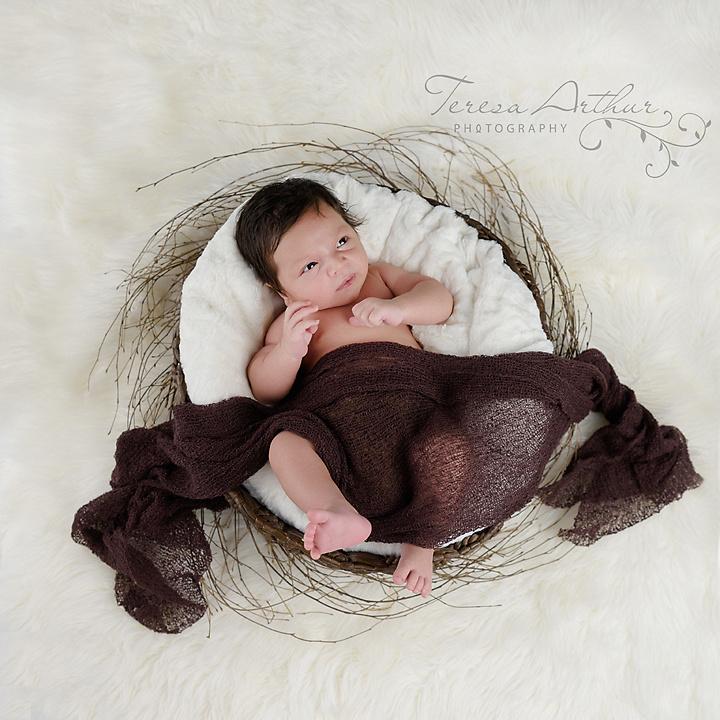 newborn boy in basket natural newborn photos