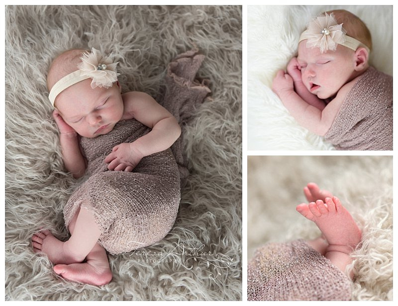 manassas newborn photographers