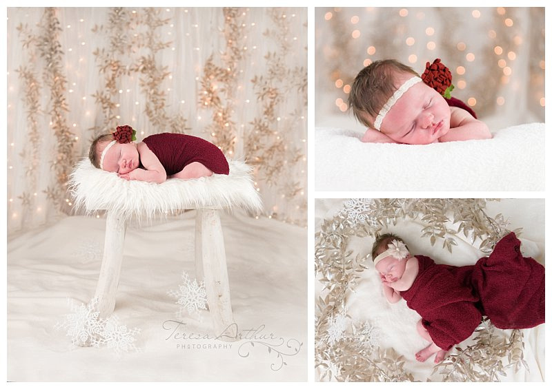 christmas newborn portraits in northern virginia
