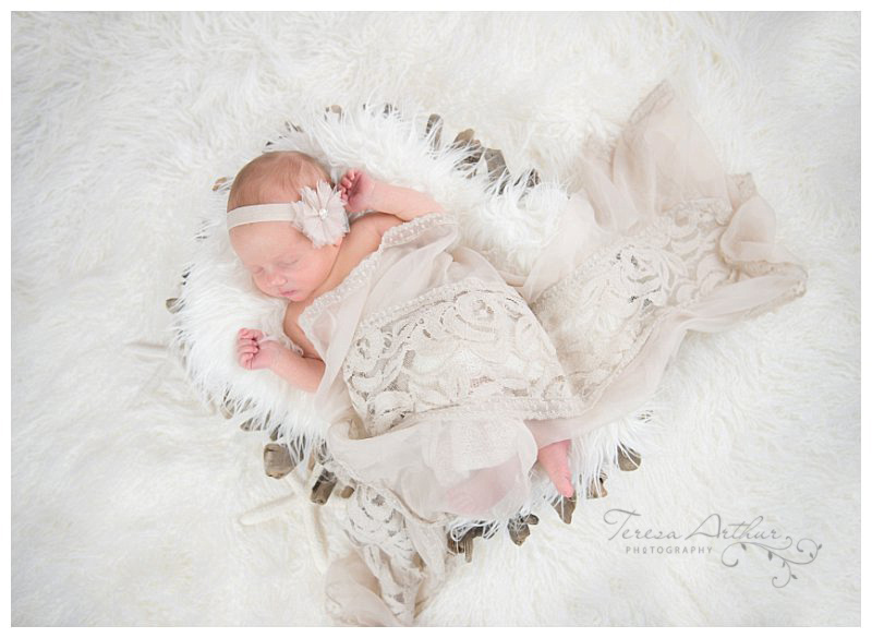 baby photographer in northern virginia teresa arthur photography