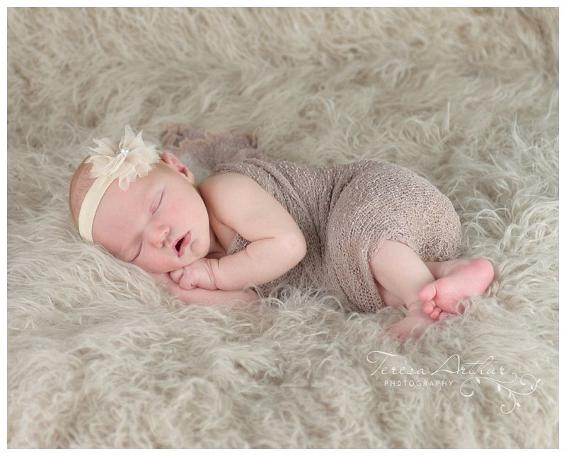 northern virginia newborn photographers